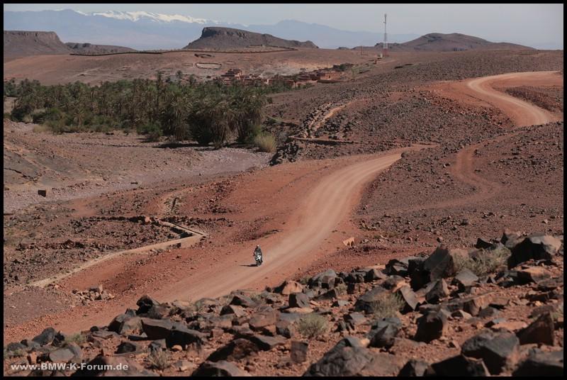 Michael Bense auf Triumph mit A41 vor Wüstenponorama