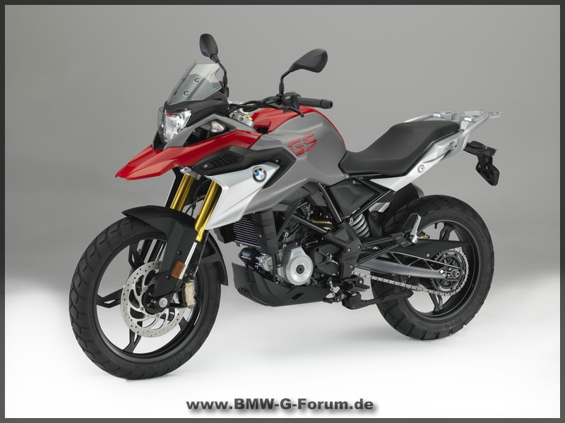 G 310 GS - links vorne